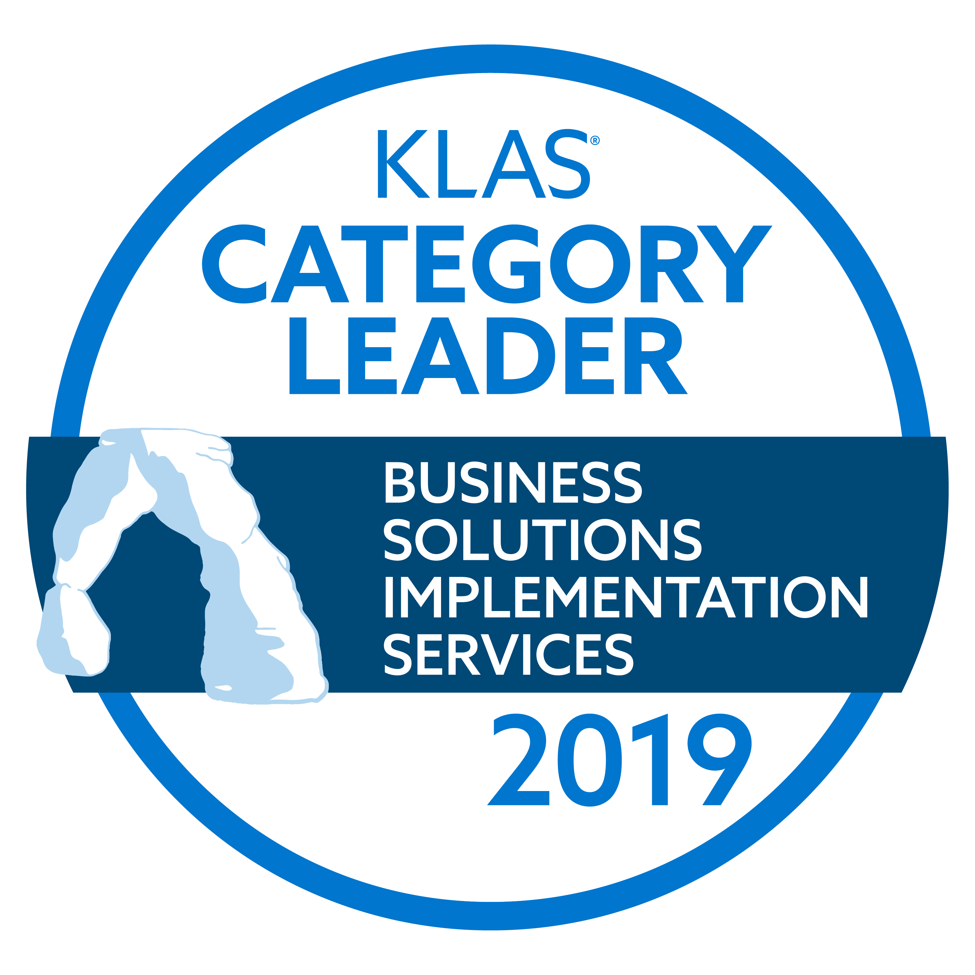 2019-category-leader-ROI-business-solutions-implementation-services